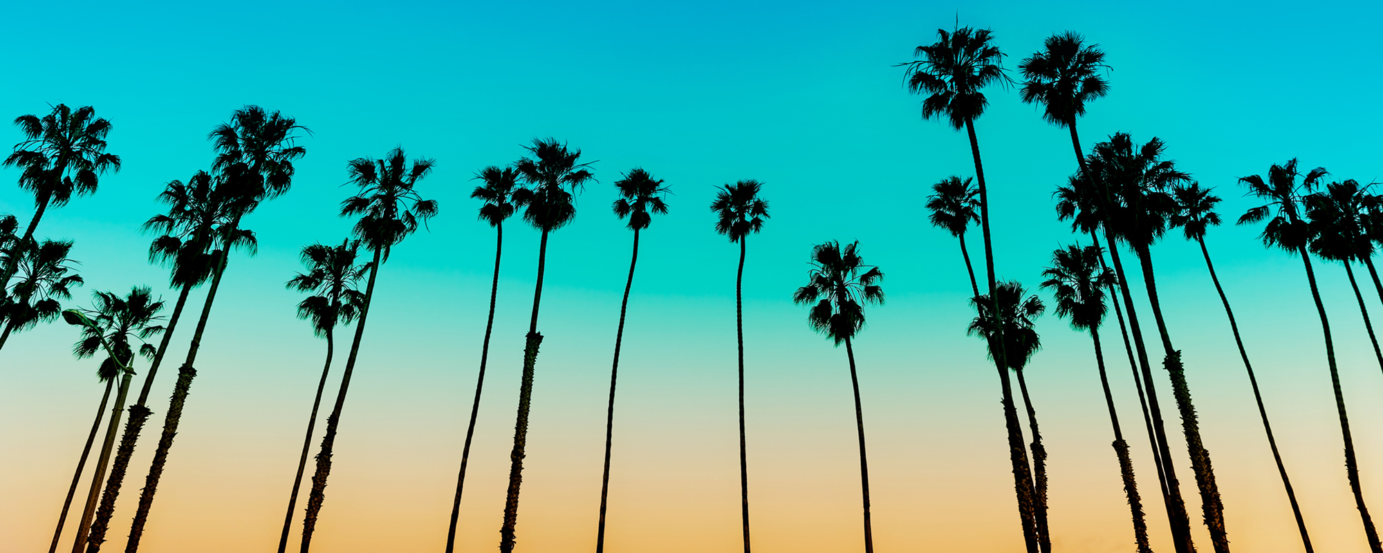 California Sunset over Casa Larrea Inn, Palm Desert CA 92260